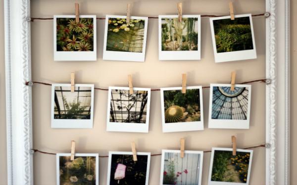polaroid-collection1
