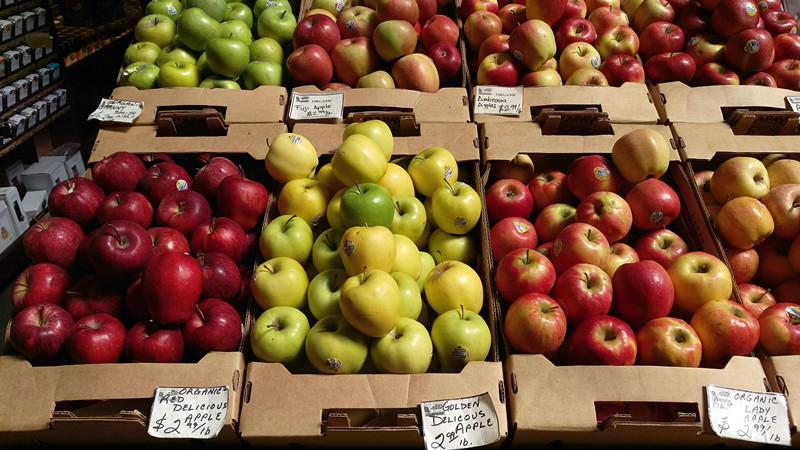 htc-one-m9-indoor-fruit